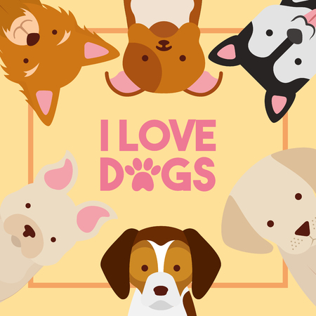 love dogs poster different breed animal domestic vector illustration