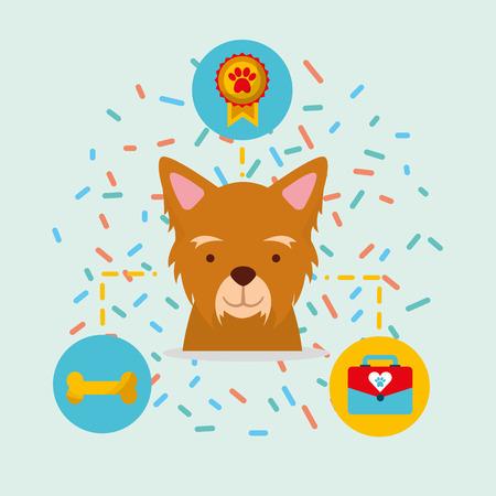 dog pet veterinary care bone medal vector illustration Stock Illustratie