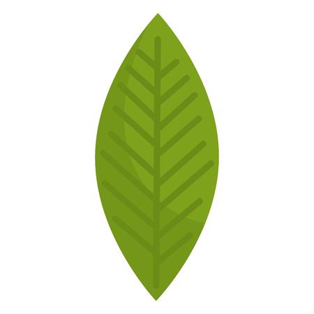 Leafs plante écologie icône illustration vectorielle conception Banque d'images - 98047954