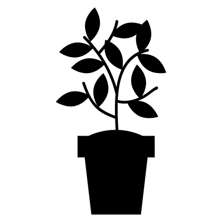 house plant in pot icon vector illustration design