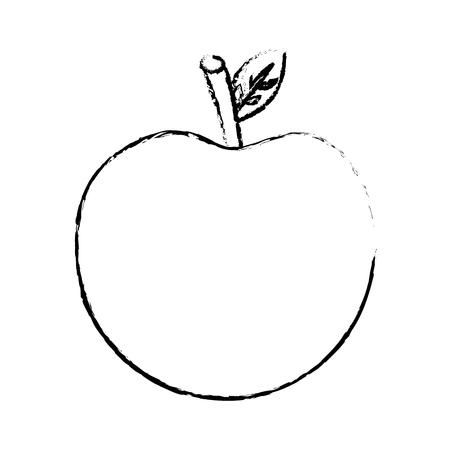 apple fruit nutrition diet fresh healthy lifestyle vector illustration sketch image
