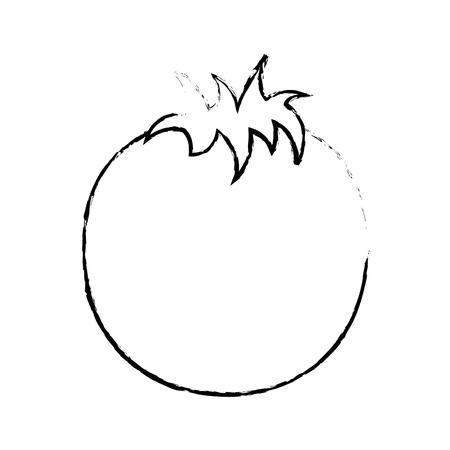 Immagine di schizzo dell'illustrazione di vettore dell'alimento di stile di vita sano di nutrizione di verdure del pomodoro fresco Archivio Fotografico - 98087912