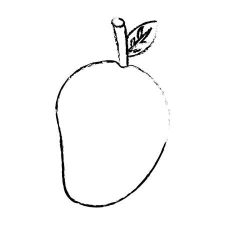 fruit nutrition diet fresh healthy lifestyle vector illustration sketch image Illustration