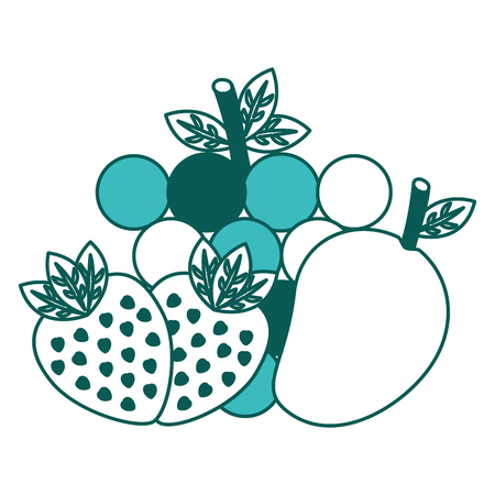 fruit food healthy lifestyle strawberry grapes  vector illustration green image