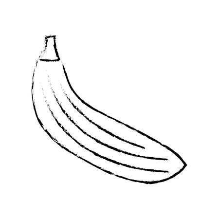 banana fruit nutrition diet fresh healthy lifestyle vector illustration sketch image