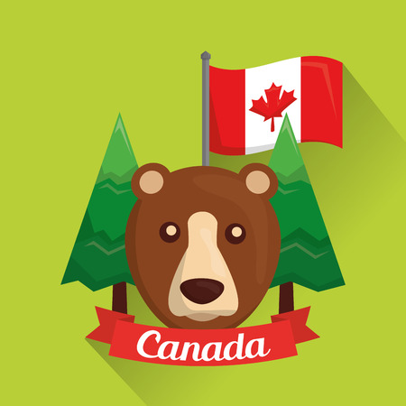canadian grizzly bear pine trees and flag vector illustration