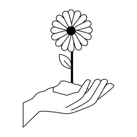 hand with beautiful sunflower vector illustration design