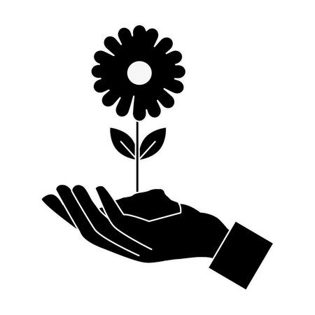 hand with beautiful sunflower vector illustration design