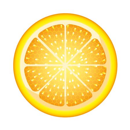 slice orange juicy fresh organic vector illustration
