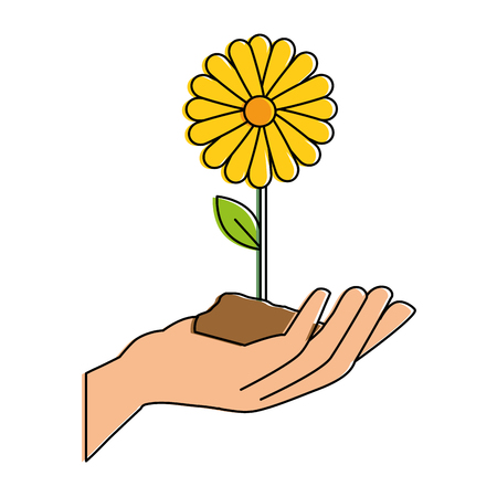 hand with beautiful sunflower colorful vector illustration design Illusztráció
