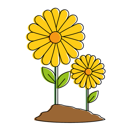 beautiful sunflower cultivated colorful vector illustration design Ilustração
