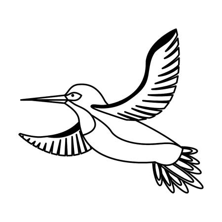 bird animal feathers wildlife image vector illustration Ilustração