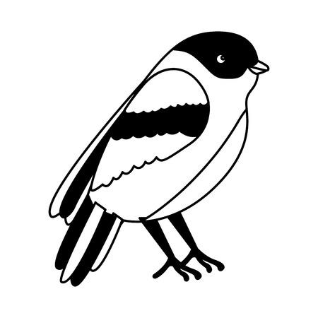 bird animal wildlife image vector illustration