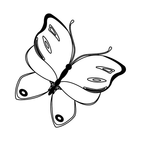 butterfly insect nature image vector illustration Ilustrace