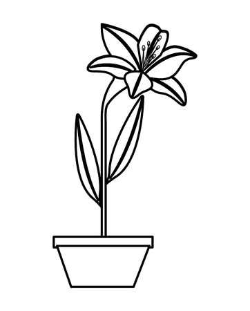 flower lily in a pot decoration icon vector illustration