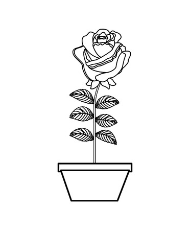 flower rose in a pot decoration icon vector illustration