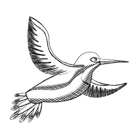 Bird in black and white Illustration. Illustration