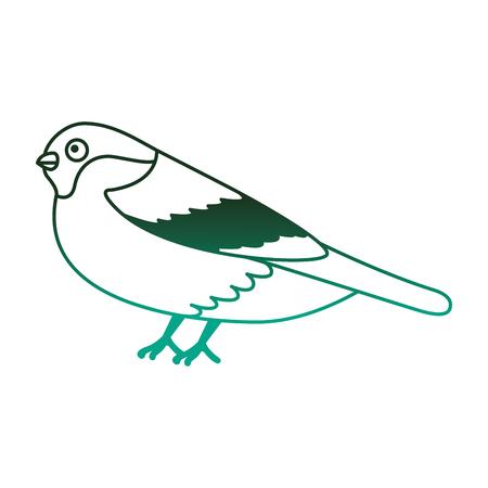 bird animal feathers wildlife image vector illustration degraded color green