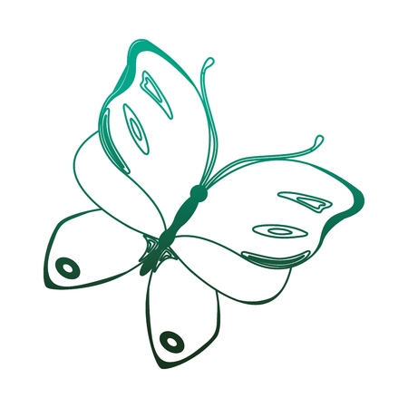 butterfly insect animal nature image vector illustration degraded color green