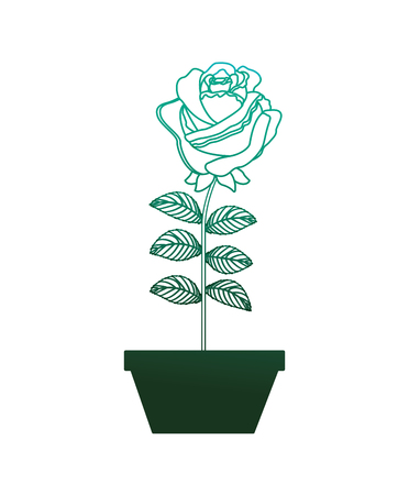 flower rose in a pot decoration icon vector illustration degraded color green  イラスト・ベクター素材