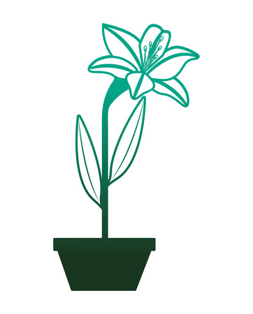 flower lily in a pot decoration icon vector illustration degraded color green Illustration