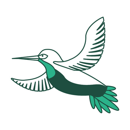 Bird animal feathers wildlife vintage style vector illustration green design.