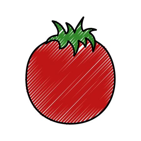 fresh tomato vegetable healthy vector illustration design Ilustração