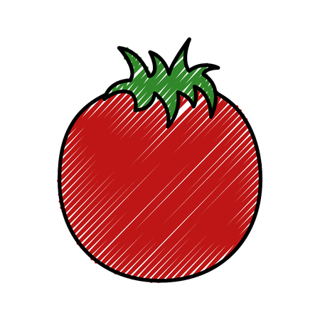 fresh tomato vegetable healthy vector illustration design Illustration