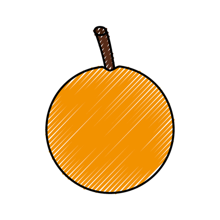 fresh passion fruit healthy food vector illustration design