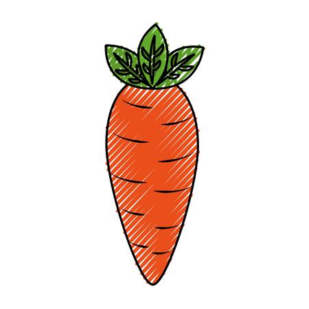 fresh carrot vegetable healthy vector illustration design Stock Illustratie