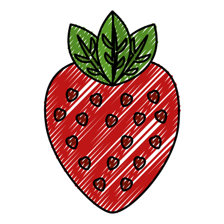 fresh strawberry fruit healthy food vector illustration design