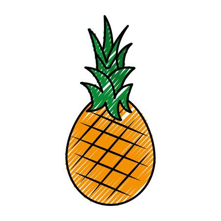 fresh pineapple fruit healthy food vector illustration design
