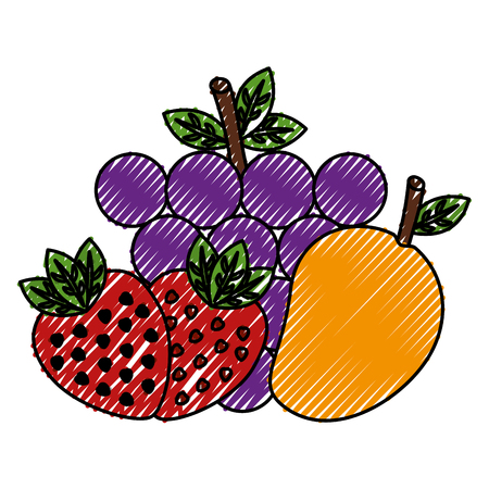 fruits group healthy food vector illustration design