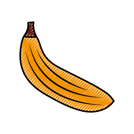 fresh banana fruit healthy food vector illustration design