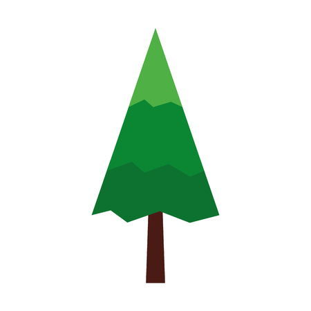 pine tree natural icon vector illustration design
