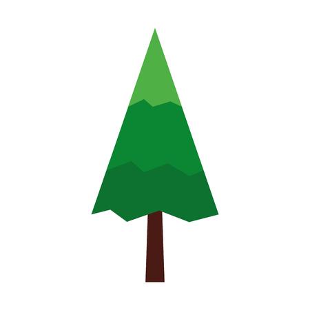 pine tree natural icon vector illustration design