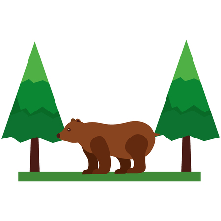 grizzly bear in pine forest scene vector illustration design