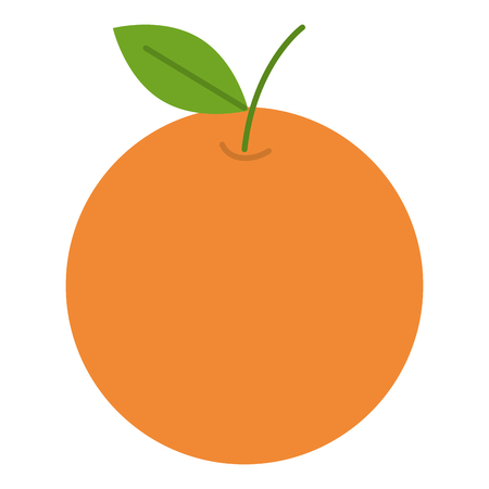 orange citrus fruit icon vector illustration design