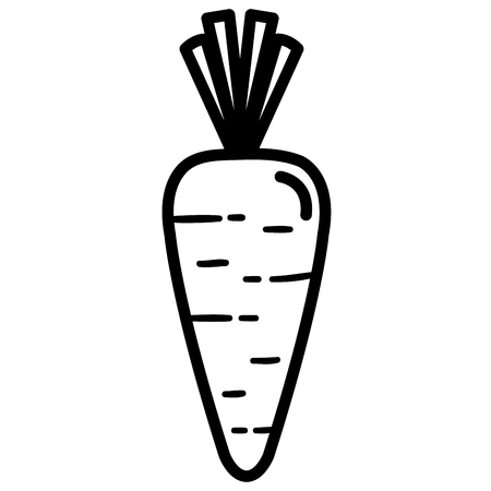carrot vegetable healthy food vector illustration design