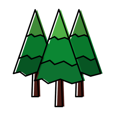 pine trees forest natural scene vector illustration design
