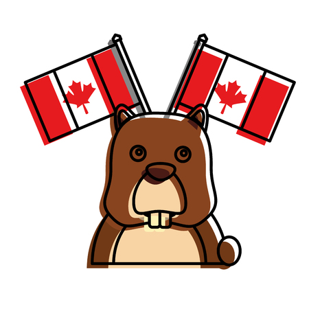 beaver with canadian flags vector illustration design