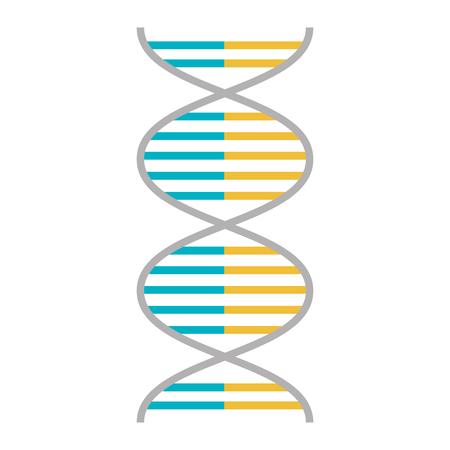 DNA molecule genetic icon vector illustration design Stock Vector - 98595601
