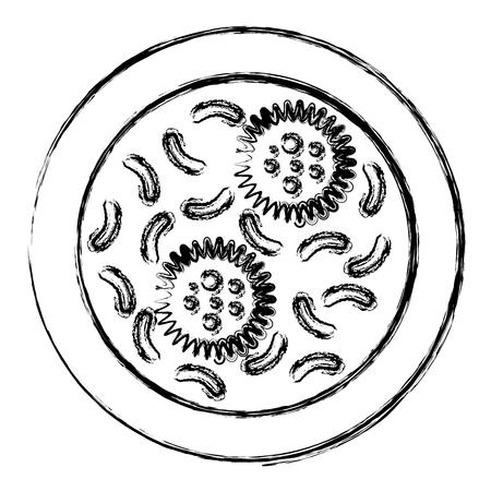 bacterial culture biolological icon vector illustration design