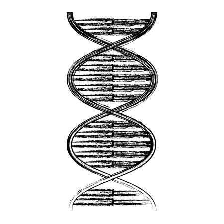 DNA molecule genetic icon vector illustration design