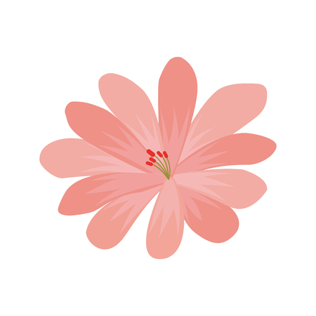 lily flower decorative icon vector illustration design