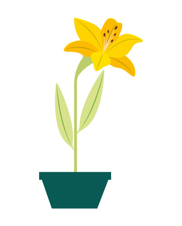 flower lily in a pot decorative vector illustration design
