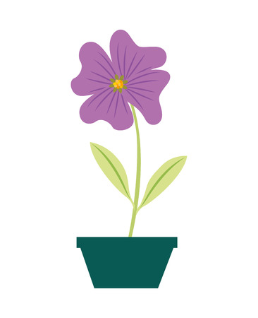 flower periwinkle in a pot decorative vector illustration design Archivio Fotografico - 98577689