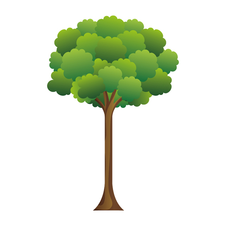 tree plant isolated icon vector illustration design Illusztráció
