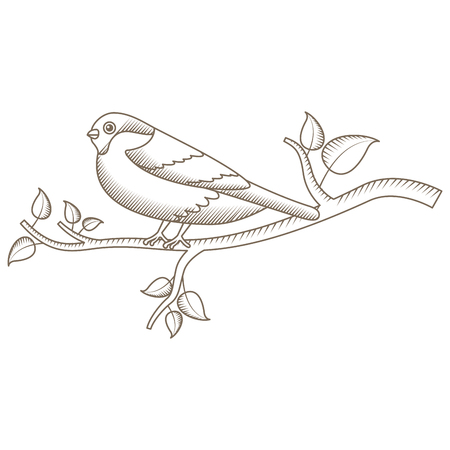 cute bird with tree branch vector illustration design