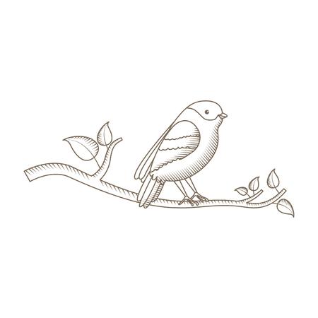 Cute bird with tree branche vector illustration design Иллюстрация